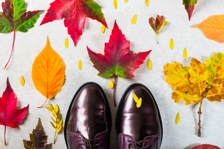 Trendy Leather Lace Up Brogues with Leaves. Composition made from autumn leaves. Flat lay, top view Reklamní fotografie