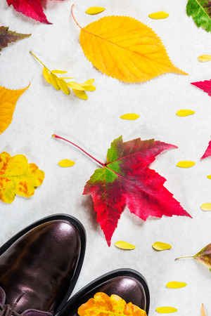 Trendy Leather Lace Up Brogues with Leaves. Composition made from autumn leaves. Flat lay, top view Stock Photo