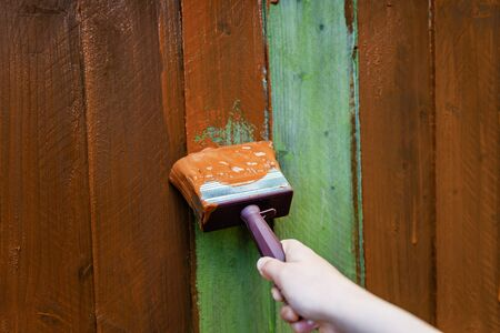 Painting old wooden fence with a brown paint, renovation concept
