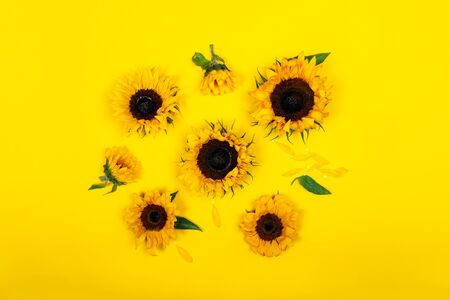Yellow Sunflower Bouquet on Bright Background, Autumn Concept, Top View, Space for Text Stock fotó
