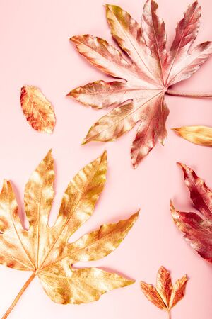 Beautiful Leaf painted in golden and copper metallic paint on pink background. Top view, copy space, flat lay