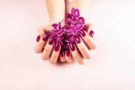 Stylish trendy red female manicure. Woman hands are holding orchid flowers