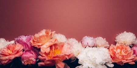 Abundance of Peonies Bouquet, Fresh bunch of flowers on dusty rose background. Card Concept, copy space for text, banner size Фото со стока
