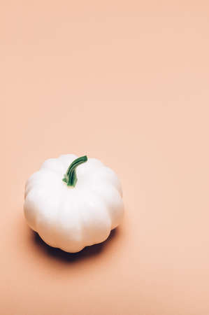 White Pumpkins on light pink background as minimal autumn concept, flat lay, top view. Halloween or Thanksgiving Holiday backgrounds Stock fotó