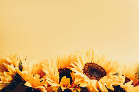 Yellow Sunflower Bouquet on bright Yellow Background, Autumn Concept, Top View, Space for Text Stock fotó