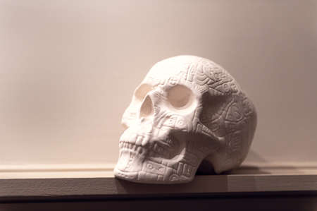 White Decorative Skull on shelf, home decoration, can be used as DIY project, for Halloween or Day of the Dead