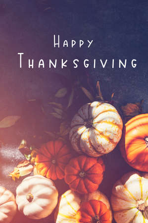 Happy Thanksgiving text with background of Pile of different pumpkins with strong shadows. Holiday concept