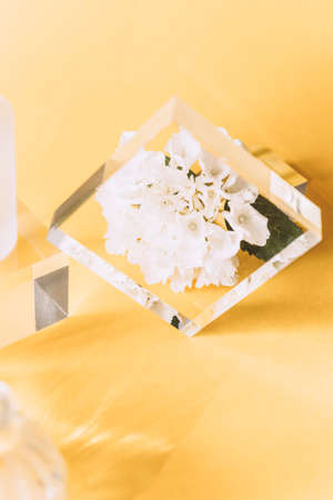 Acrylic Solid Display Blocks for Shop Windows with Tiny Vase and Hydrangea flower on yellow background