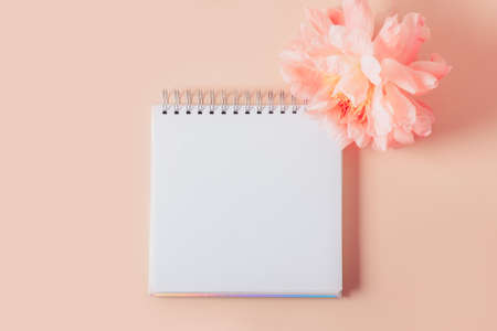 Empty open notebook for writing dreams and wishes. Amazingly beautiful pink peony nearby. Light pink background with copy space for text. Card Concept
