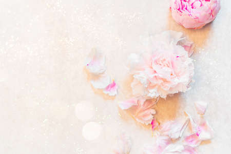 Frame made of pink peony flowers on white background. Feminine flower composition. Flat lay, top view copy space