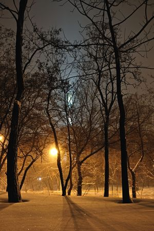 Winter city landscape. Frosty evening in Rostov-on-Don Stock Photo - 6311368