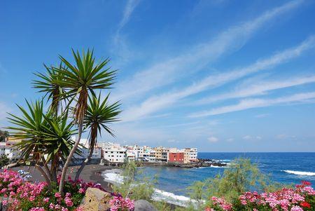 puerto cruz beach Standard-Bild