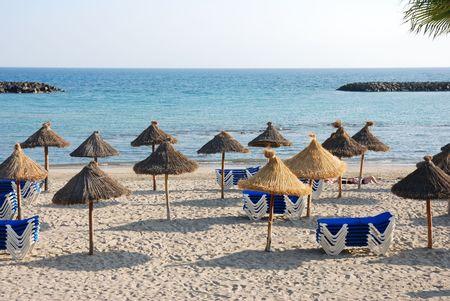 sunshades: sunshades at the beach