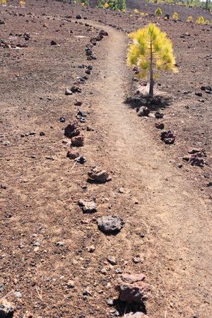 volcanic stones: trail through volcanic landscape Stock Photo