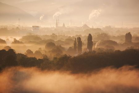 industry moody: morning mood, landscape with trees and smoke stacks, back lit