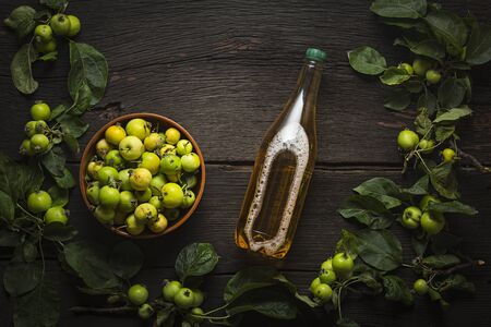 Cider of wild apples. Frame for design. Creative Projects