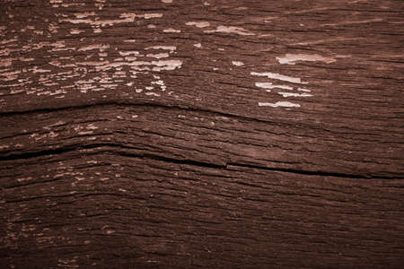 wood texture wooden background from old boards. Archivio Fotografico