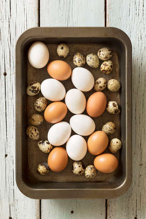 Chicken and quail eggs in a tin tray on a wooden background
