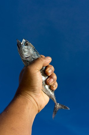 hand grasps a fresh fish photo