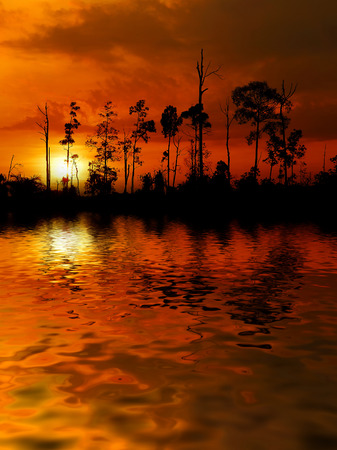 colourful landscape with silhouette trees during sunset. digital compositing with colour tone, water reflection and ripple effects.