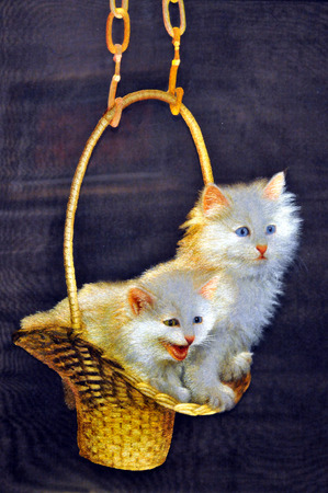 basket embroidery: Basket cat white cat embroidery embroidery craft materials Editorial