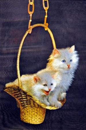 craft materials: Basket cat white cat embroidery embroidery craft materials Editorial