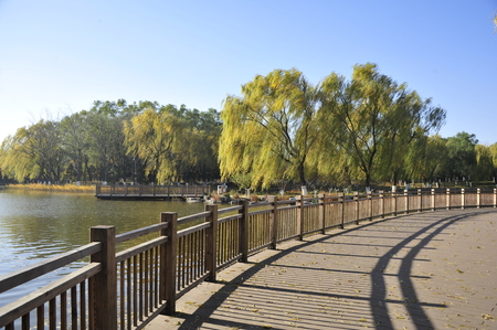 Beijing Tongzhou Grand Canal Forest Park