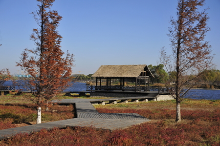 wooden pavilion at Beijing Tongzhou Grand Canal Forest Park