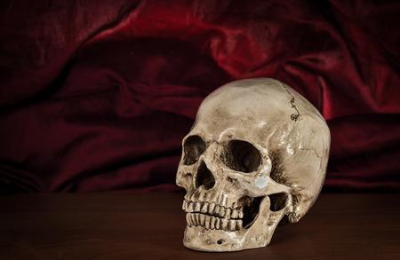 eye socket: Still life white human skull on wooden table Stock Photo
