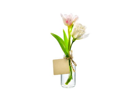clear bottle: Pink flower in clear bottle with label on white background
