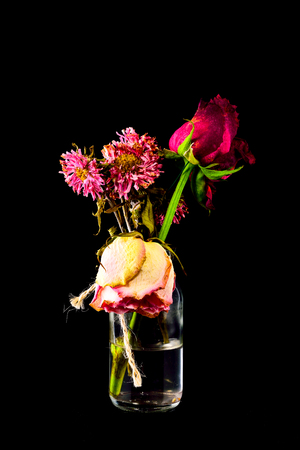 dispirited: Wither Red and pink flowers in clear bottle on black background