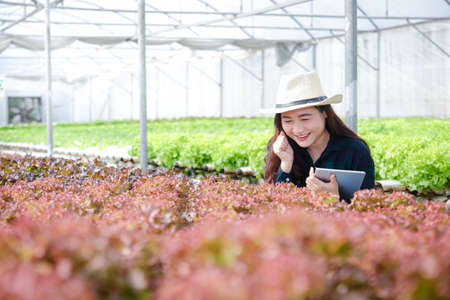 A young Asian woman who runs an organic vegetable garden exports to foreign countries is checking their production.