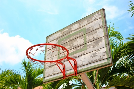 Basket ball hoop photo