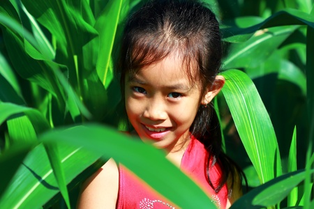 The girl was standing near corn fields Stock Photo - 11044228