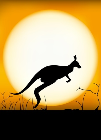 Kangaroo sunset Stock Illustratie
