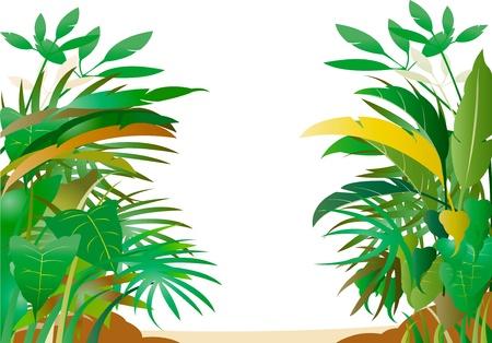 Tropikalny las Ilustracja