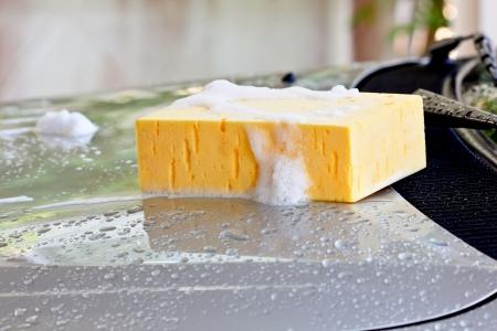 Wash car with sponge and car wash shampoo