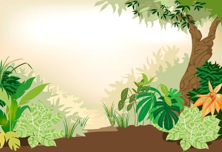 森林の美しい  イラスト・ベクター素材