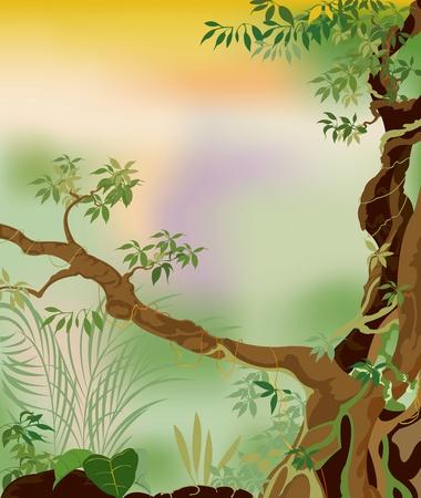 jungle background: Deep forest
