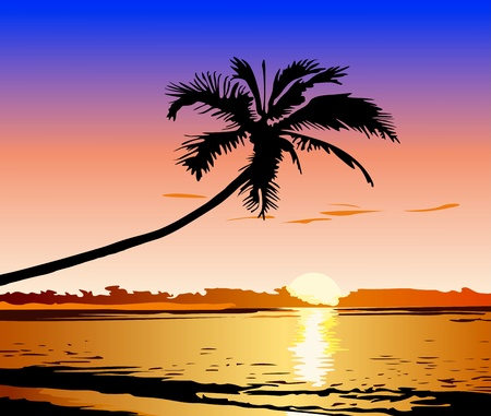 Beautiful sunset on the beach Vector