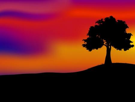 Árvore do por do sol silhueta e bonita Ilustração