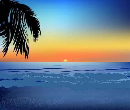 海と夕暮れ時のビーチ。ヤシの木の影で