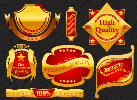 Premium label golden with banner background Vector