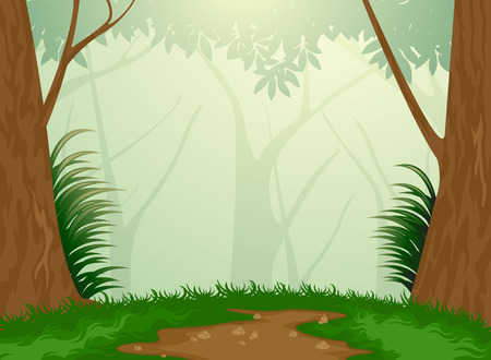 rain forest: Beautiful tropical evergreen forest nature background