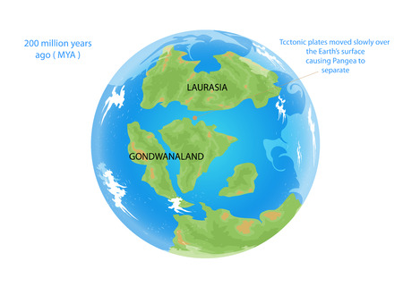 moved: Tectonic places moved slowly over the Earths surface