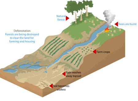 Deforestation,geological nature vector background Illustration