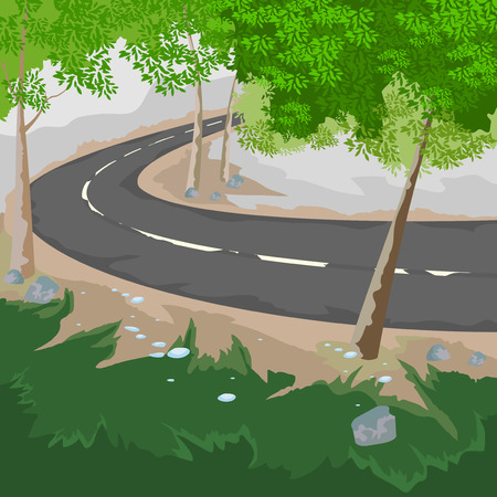 country roads: Forest and road,nature landscape background