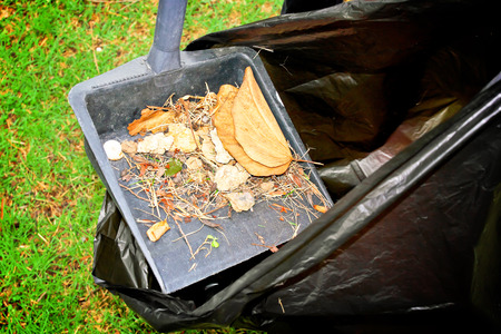 natue: Sweeping and leaves put in garbage bag