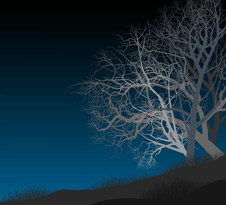 autumn scene: Night autumn seasonal scene vector nature background Illustration