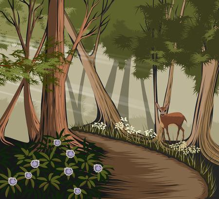 Bosque y la naturaleza de los ciervos del vector paisaje de fondo